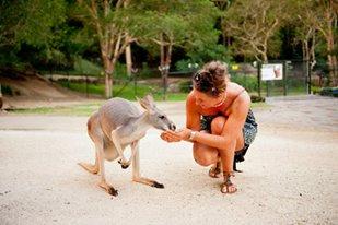 Meet Your New Wildlife Friends at Currumbin Wildlife Sanctuary
